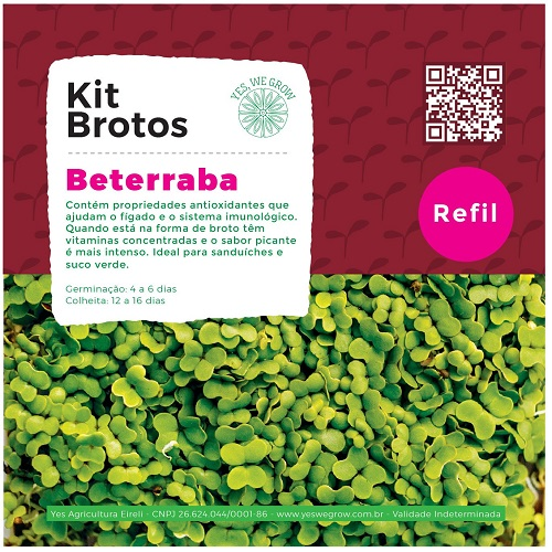 Refil para Kit Brotos Beterraba Yes We Grow