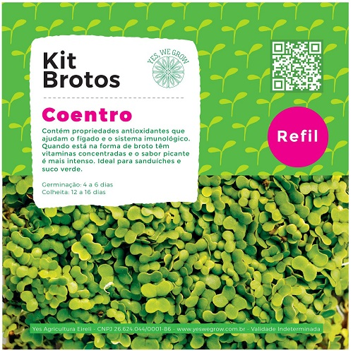 Refil para Kit Brotos Coentro Yes We Grow