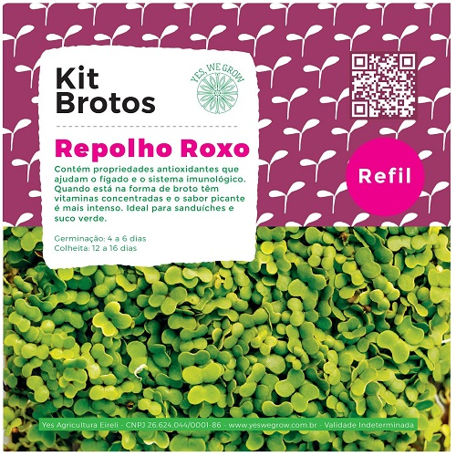 Refil para Kit Brotos Repolho Roxo Yes We Grow