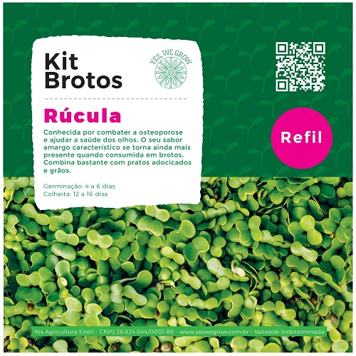 Refil para Kit Brotos Rúcula Yes We Grow